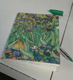 mi cuaderno de insultos
